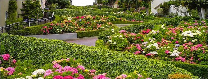 Famous Lombard Street