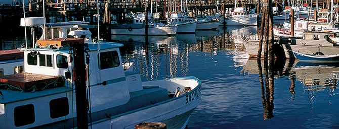 San Francisco Events - Boat Show at AT&T Park